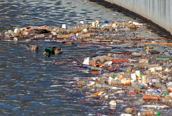 Resultado de imagem para poluição rios